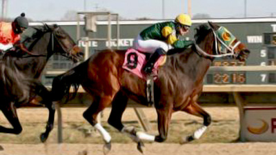 Aces Mark, Horse Named for Sept. 11 Victims, Set to Race on Ninth Anniversary of Tragic Day