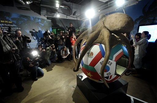 Paul the Octopus Honored With Memorial, Serving as Final Goodbye to Magical Mollusk