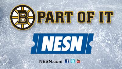 Boston Bruins Fans on NESN