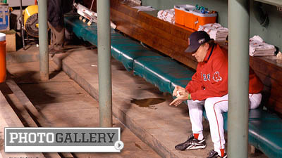 Curt Schilling's 38 Studios Saga Is Latest in Former Athletes' Attempts at Business Success (Gallery)