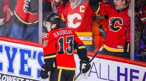 Flames' Johnny Gaudreau Among Best NHL Players To Watch In 2015 (Video)