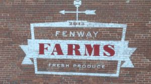Fenway Farms Has Become An Urban Farming Leader In The United States