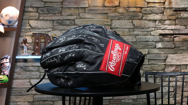 Red Sox autographed glove