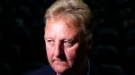 NBA Fans Convinced Viral Tomato Looks Like Celtics Legend Larry Bird