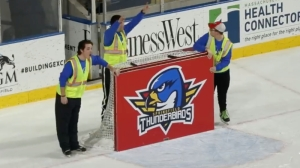 Fan Hits Insane Shot To Win Mercedes At Minor League Hockey Game