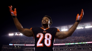 Broncos Vs. Bengals Live Stream: Watch NFL Week 13 Game Online