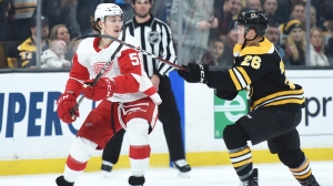 Bruins Notes: Here's What B's, Red Wings Players Said About Fight