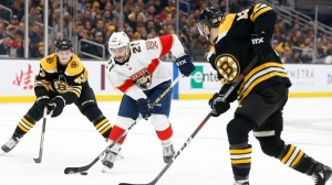 Berkshire Bank Hockey Night In New England: Projected Bruins-Panthers Lines, Pairings