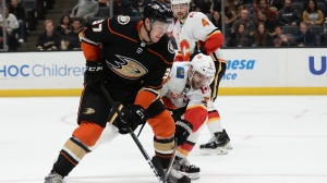 Berkshire Bank Hockey Night In New England: Projected Bruins-Flames Lines, Pairings