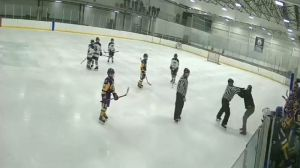 NH Youth Hockey Coach Fired After Attacking Referee During Game In Mass.