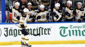 Berkshire Bank Hockey Night In New England: Projected Bruins-Lightning Lines, Pairings