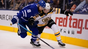 Predicting Bruins Playoff Roster Based On Rumored Roster Expansion Guidelines