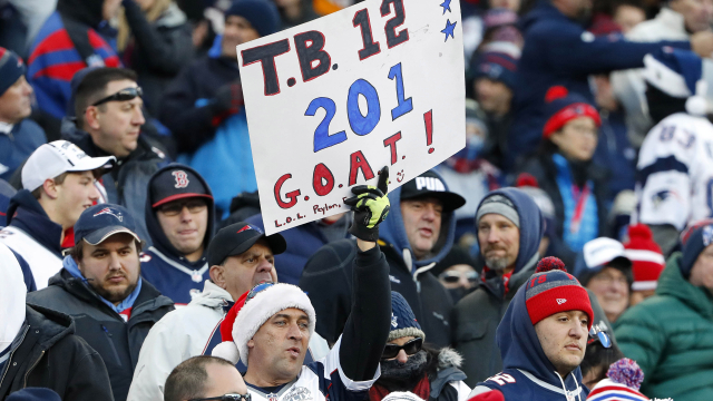 Tom Brady fan