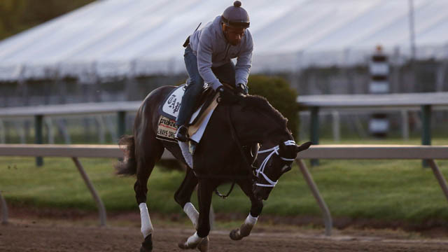 Always Dreaming working out at Preakness