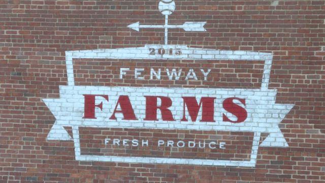 Fenway Farms at Fenway Park
