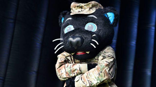 Carolina Panthers mascot