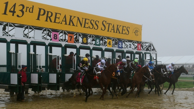 143rd Running Of The Preakness Stakes