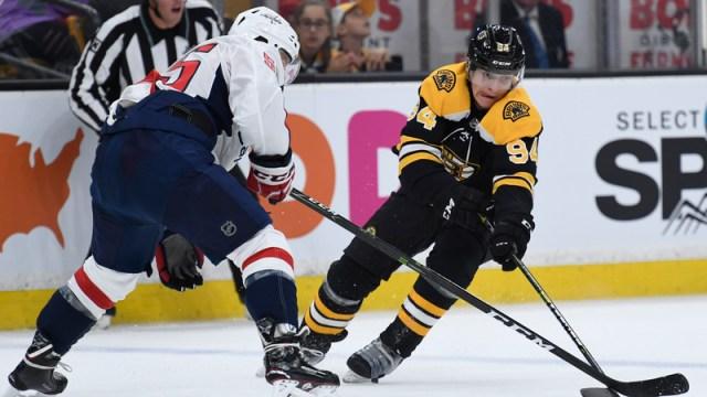 Boston Bruins Forward Jakub Lauko