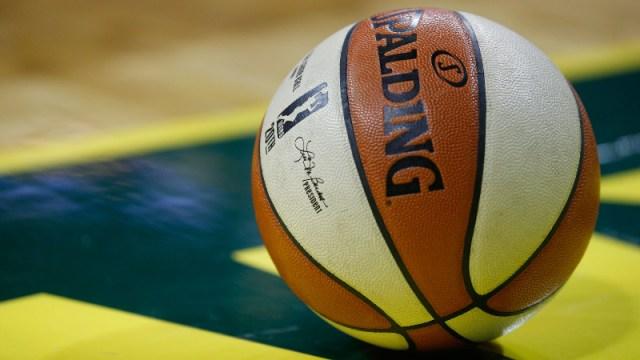 The WNBA logo on a ball