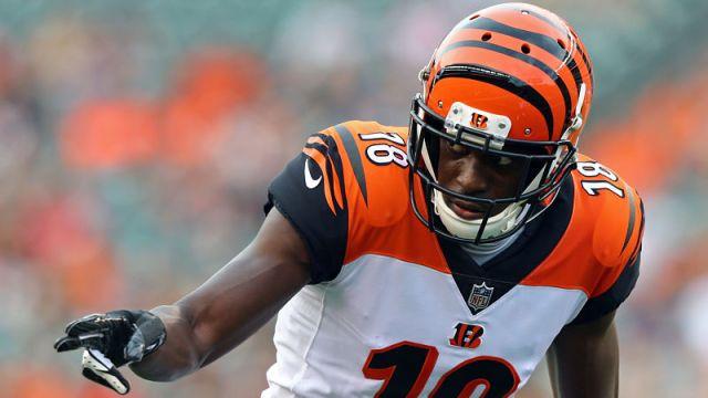 Cincinnati Bengals wide receiver