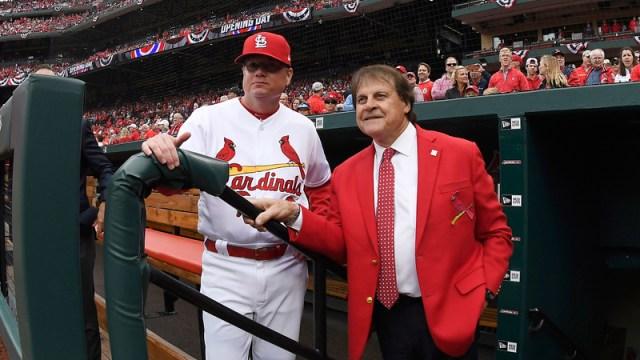 Los Angeles Angels Senior Advisor, Baseball Operations Tony LaRussa