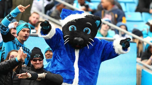 Carolina Panthers mascot