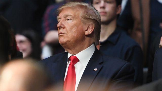 President of United States Donald Trump