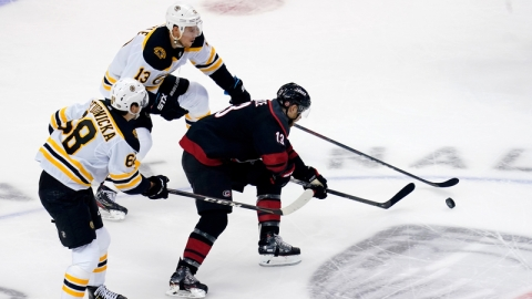 Boston Bruins forwards Jack Studnicka and Charlie Coyle, Carolina Hurricanes forward Warren Foegele