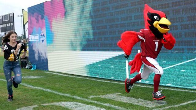 Arizona Cardinals mascot Big Red