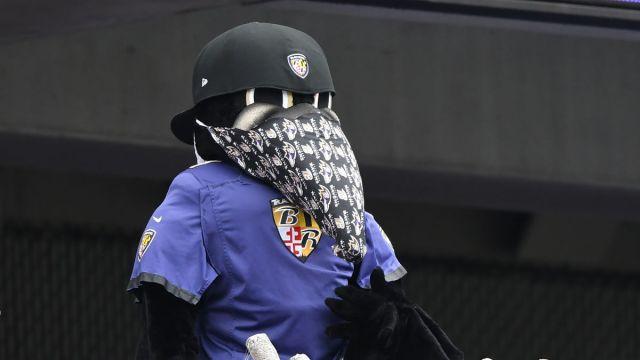 Baltimore Ravens mascot