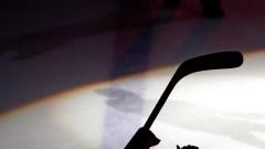 NHL Hockey Stick