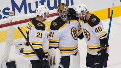 Boston Bruins' Nick Ritchie, Jaroslav Halak And David Krejci