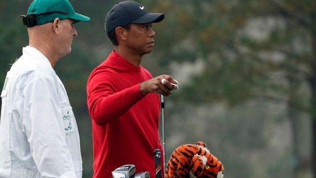 Pro golfer Tiger Woods
