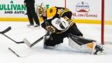 Boston Bruins Goalie Dan Vladar