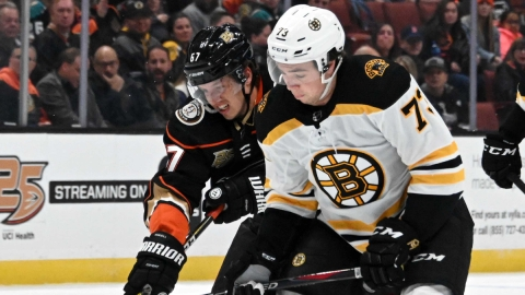 Boston Bruins defenseman Charlie McAvoy, Anahem Ducks winger Rickard Rakell