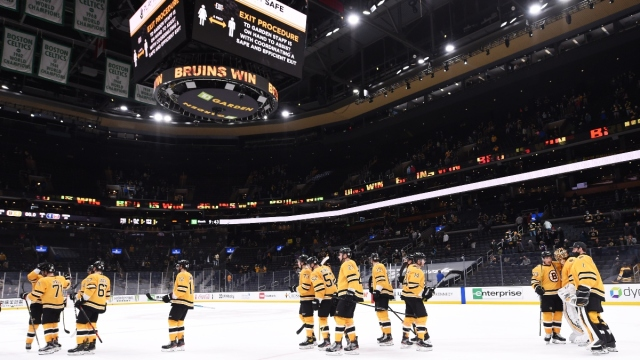 Members of the Boston Bruins