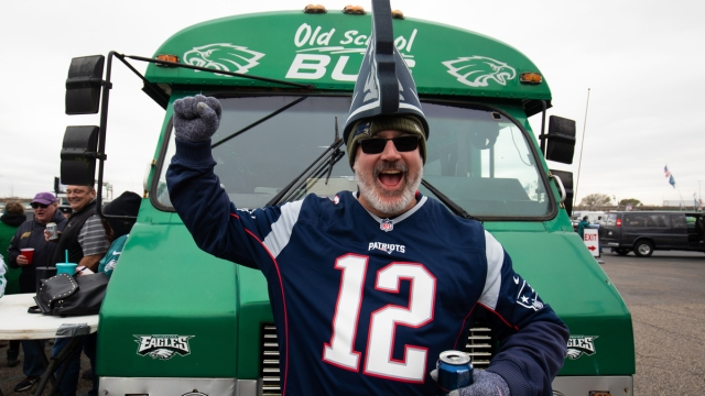 New England Patriots fan