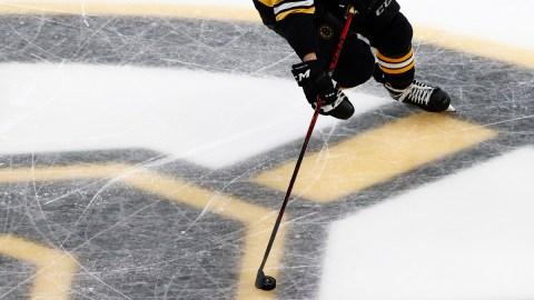 The Boston Bruins