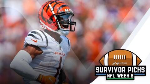 Cincinnati Bengals wide receiver Ja'Marr Chase